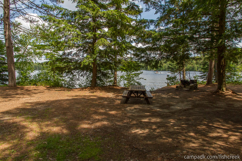 Campsite Photo of Site 243 at Fish Creek Pond Campground, New York - Looking at Site from Part Way In