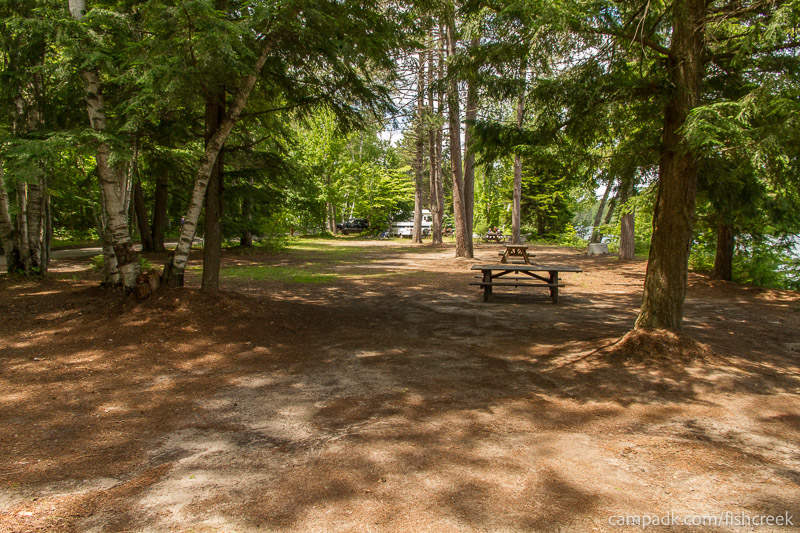 Campsite Photo of Site 243 at Fish Creek Pond Campground, New York - Cross Site View