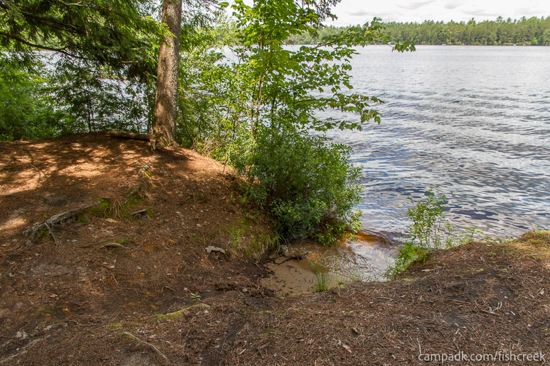 Campsite Photo of Site 243 at Fish Creek Pond Campground, New York - Shoreline
