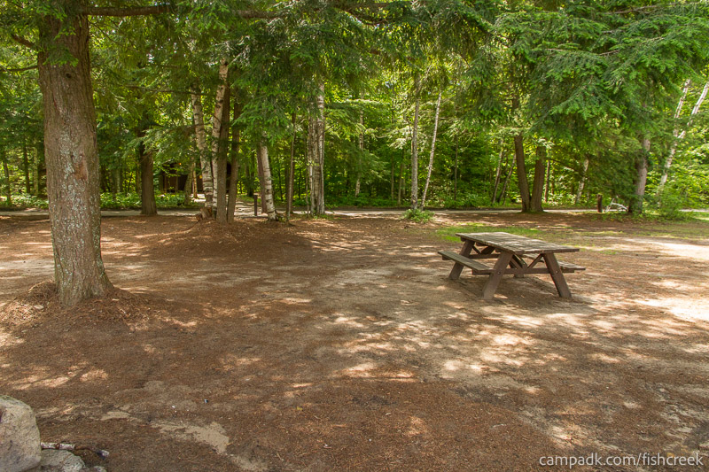 Campsite Photo of Site 243 at Fish Creek Pond Campground, New York - Looking Back Towards Road