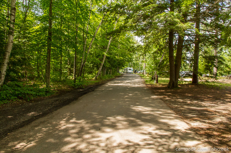 Campsite Photo of Site 243 at Fish Creek Pond Campground, New York - View Down Road from Campsite