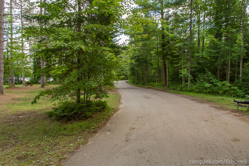 Campsite Photo of Site 277 at Fish Creek Pond Campground, New York - View Down Road from Campsite