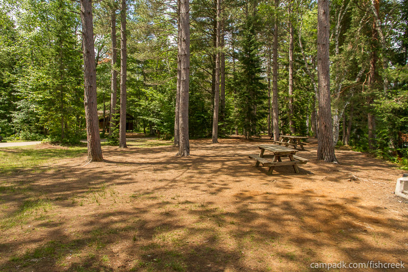 Campsite Photo of Site 278 at Fish Creek Pond Campground, New York - Cross Site View
