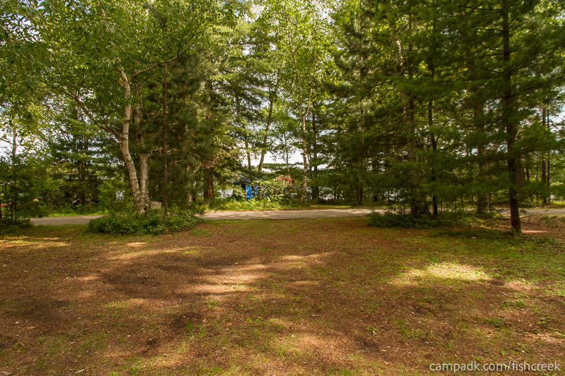 Campsite Photo of Site A10 at Fish Creek Pond Campground, New York - Looking Back Towards Road