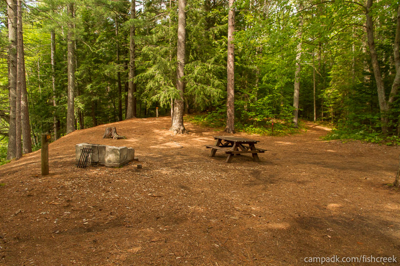 Campsite Photo of Site C6 at Fish Creek Pond Campground, New York - Cross Site View