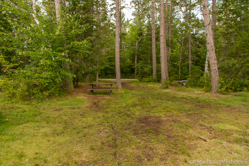 Campsite Photo of Site 281 at Fish Creek Pond Campground, New York - Looking Back Towards Road