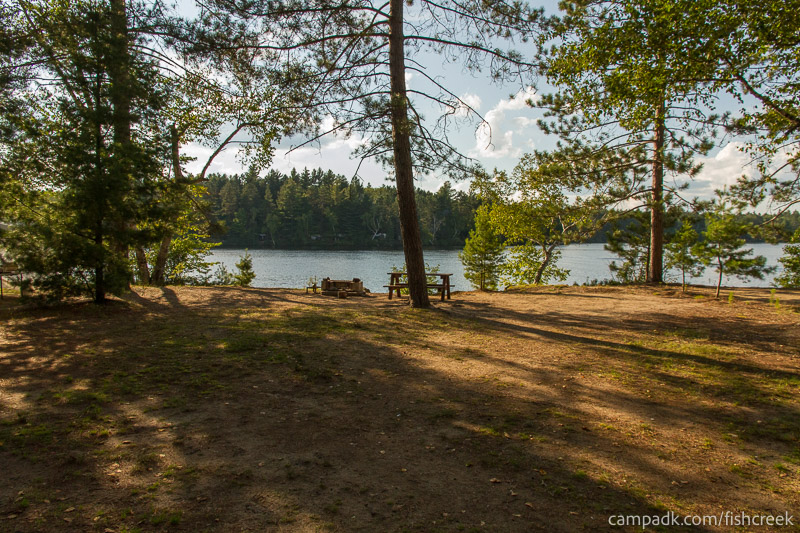 Campsite Photo of Site 186 at Fish Creek Pond Campground, New York - Looking at Site from Part Way In