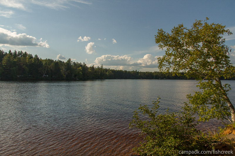 Campsite Photo of Site 186 at Fish Creek Pond Campground, New York - View from Shoreline
