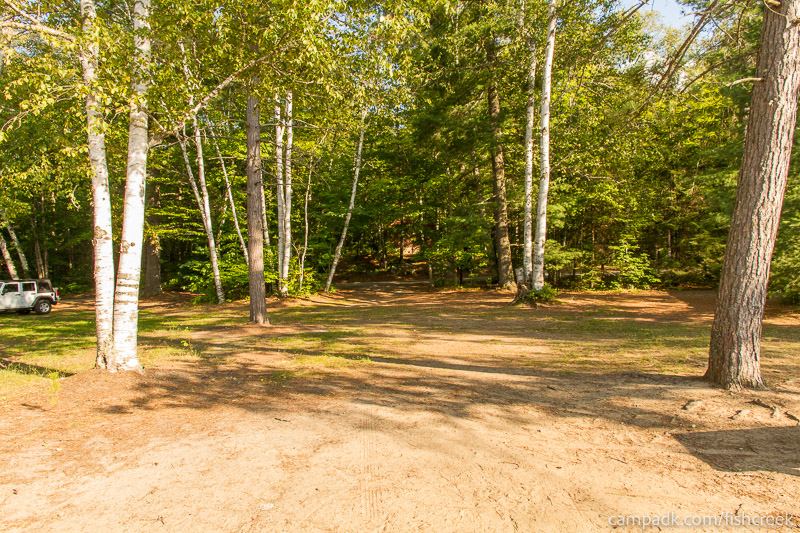 Campsite Photo of Site 186 at Fish Creek Pond Campground, New York - Looking Back Towards Road