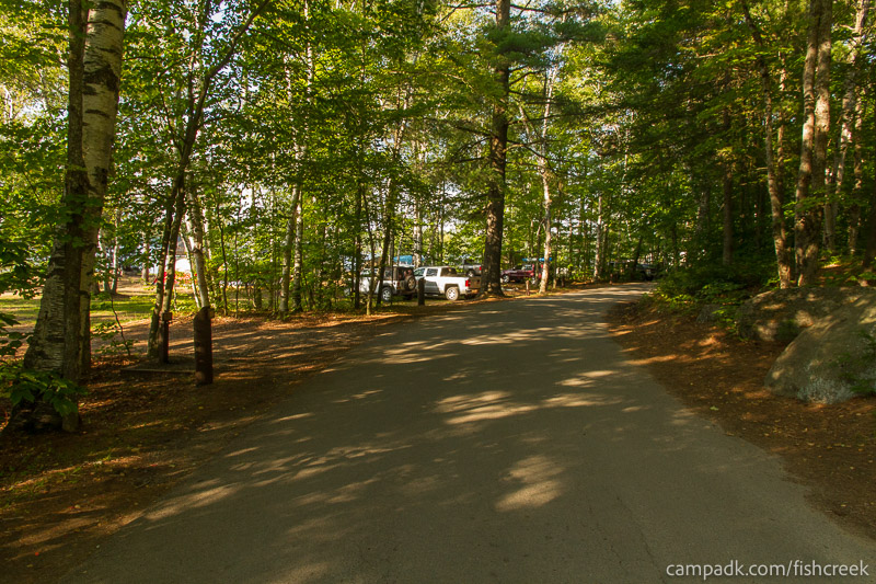 Campsite Photo of Site 186 at Fish Creek Pond Campground, New York - View Down Road from Campsite
