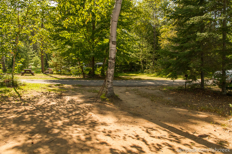 Campsite Photo of Site 56 at Fish Creek Pond Campground, New York - Looking Back Towards Road