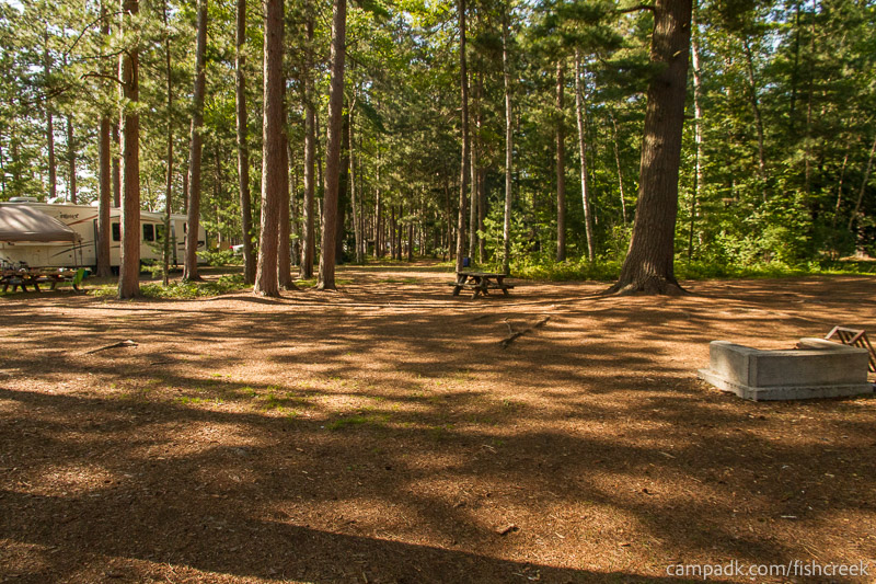 Campsite Photo of Site A12 at Fish Creek Pond Campground, New York - Looking at Site from Part Way In
