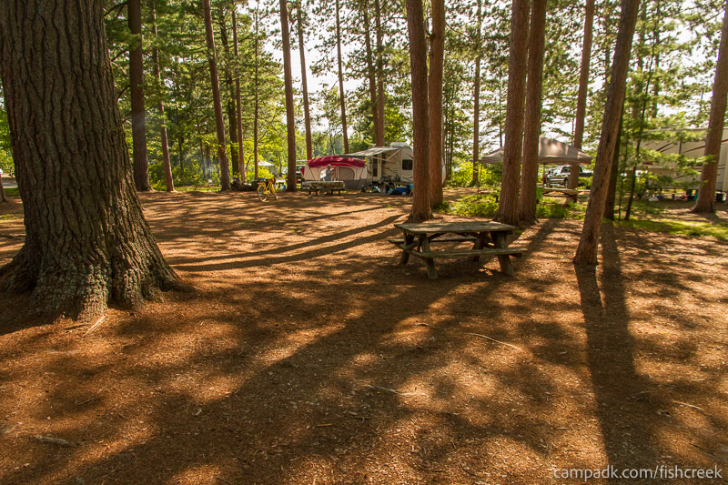 Campsite Photo of Site A12 at Fish Creek Pond Campground, New York - Cross Site View