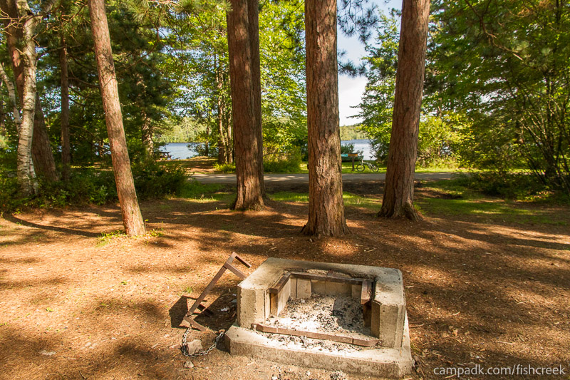 Campsite Photo of Site A12 at Fish Creek Pond Campground, New York - Fireplace View