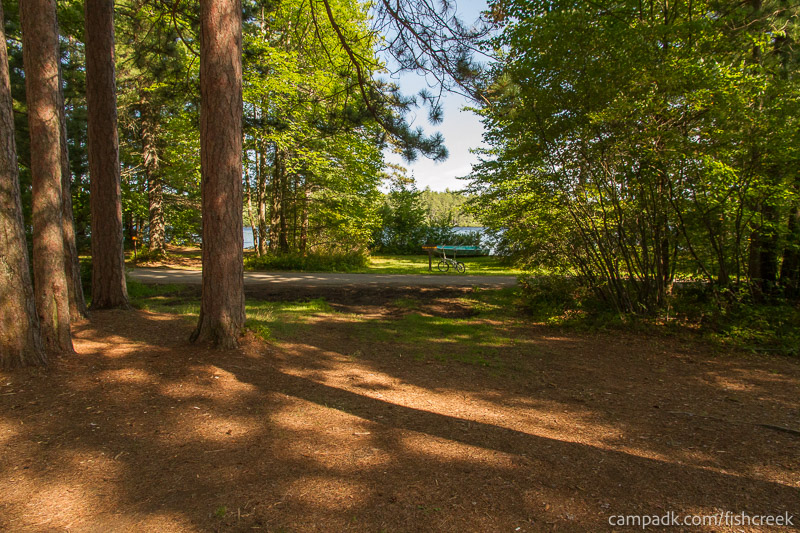 Campsite Photo of Site A12 at Fish Creek Pond Campground, New York - Looking Back Towards Road