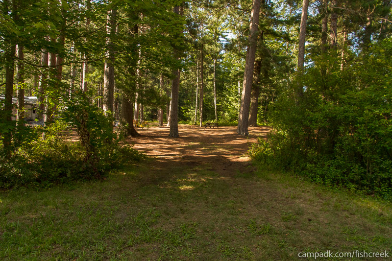 Campsite Photo of Site A12 at Fish Creek Pond Campground, New York - Looking at Site from Road
