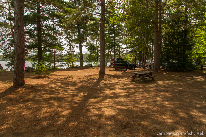 Campsite Photo of Site 249 at Fish Creek Pond Campground, New York - Cross Site View