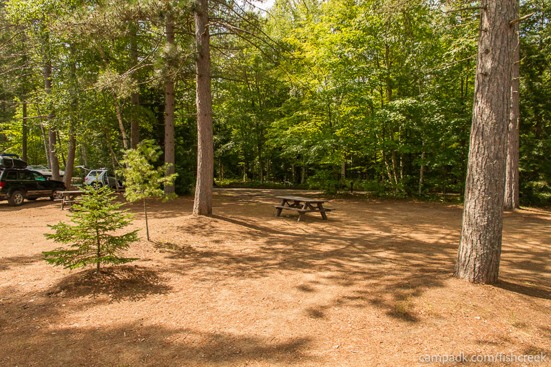 Campsite Photo of Site 249 at Fish Creek Pond Campground, New York - Looking Back Towards Road