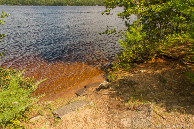 Campsite Photo of Site 197 at Fish Creek Pond Campground, New York - Shoreline