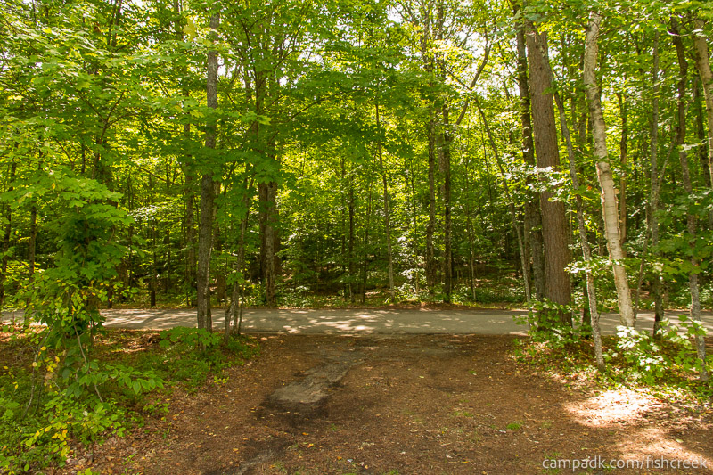Campsite Photo of Site 197 at Fish Creek Pond Campground, New York - Looking Back Towards Road