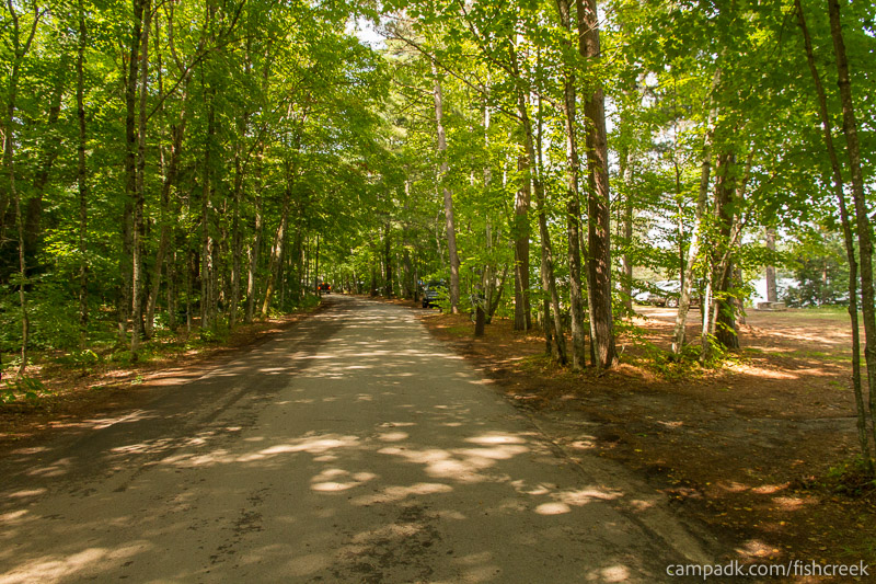 Campsite Photo of Site 197 at Fish Creek Pond Campground, New York - View Down Road from Campsite