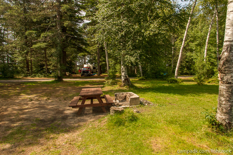 Campsite Photo of Site 62 at Fish Creek Pond Campground, New York - Looking Back Towards Road