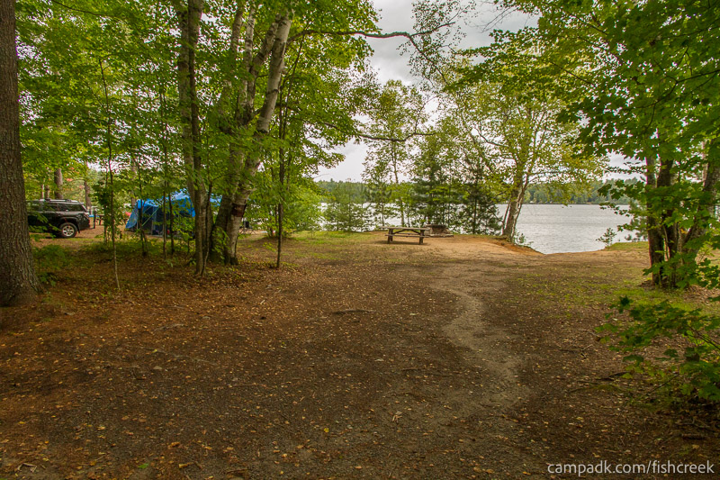 Campsite Photo of Site 198 at Fish Creek Pond Campground, New York - Looking at Site from Road