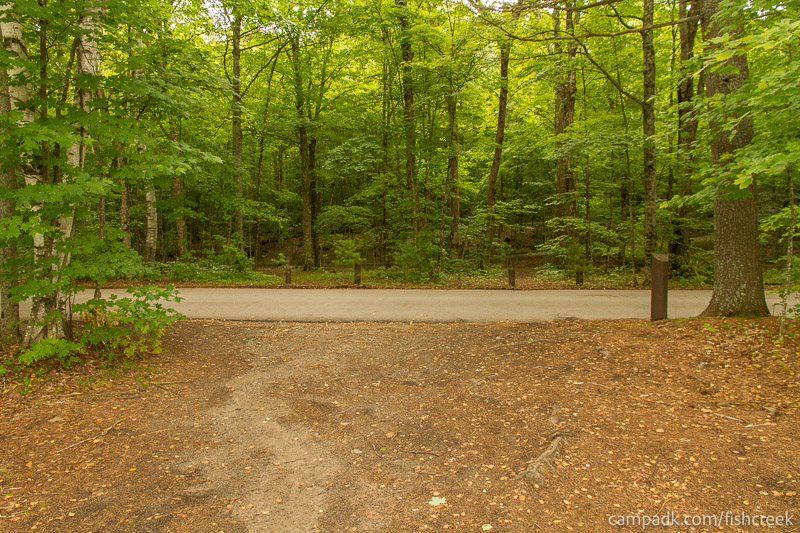 Campsite Photo of Site 198 at Fish Creek Pond Campground, New York - Looking Back Towards Road