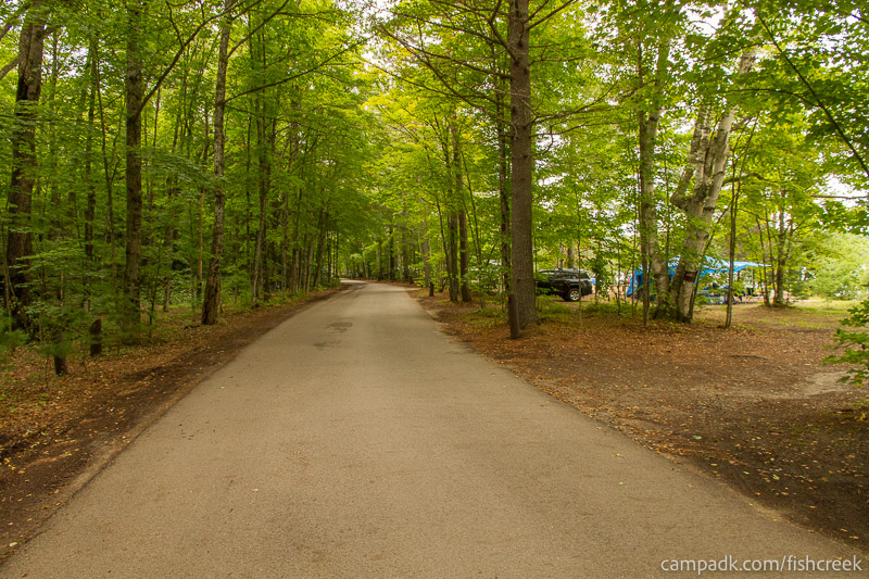 Campsite Photo of Site 198 at Fish Creek Pond Campground, New York - View Down Road from Campsite