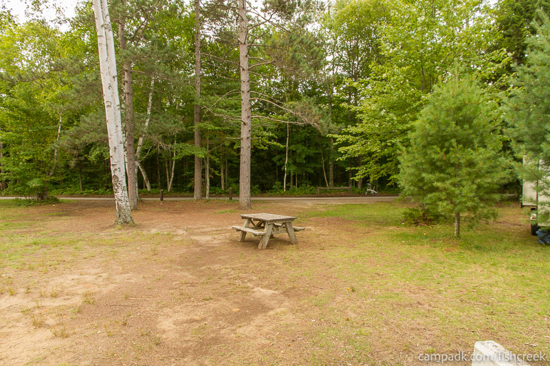 Campsite Photo of Site 234 at Fish Creek Pond Campground, New York - Looking Back Towards Road