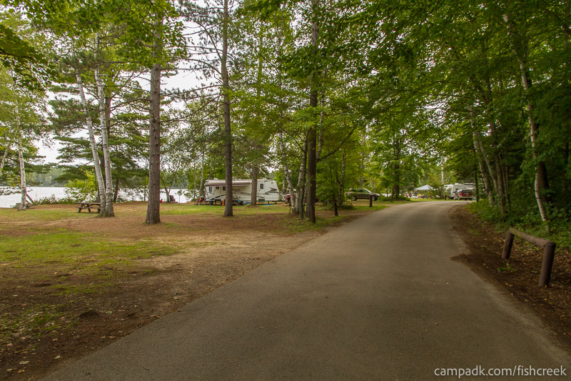 Campsite Photo of Site 234 at Fish Creek Pond Campground, New York - View Down Road from Campsite