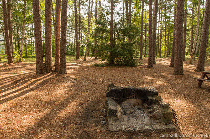 Campsite Photo of Site A18 at Fish Creek Pond Campground, New York - Fireplace View