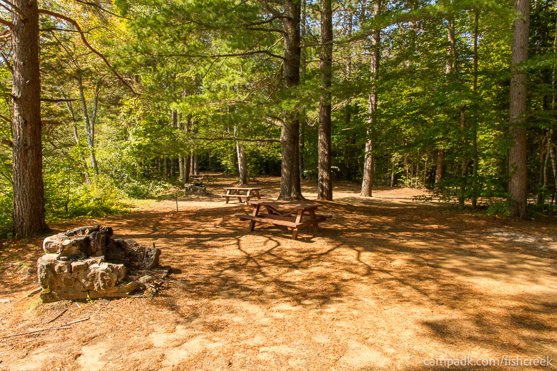 Campsite Photo of Site 261 at Fish Creek Pond Campground, New York - Cross Site View