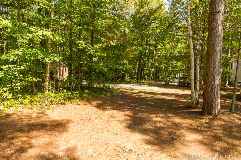 Campsite Photo of Site 261 at Fish Creek Pond Campground, New York - Looking Back Towards Road