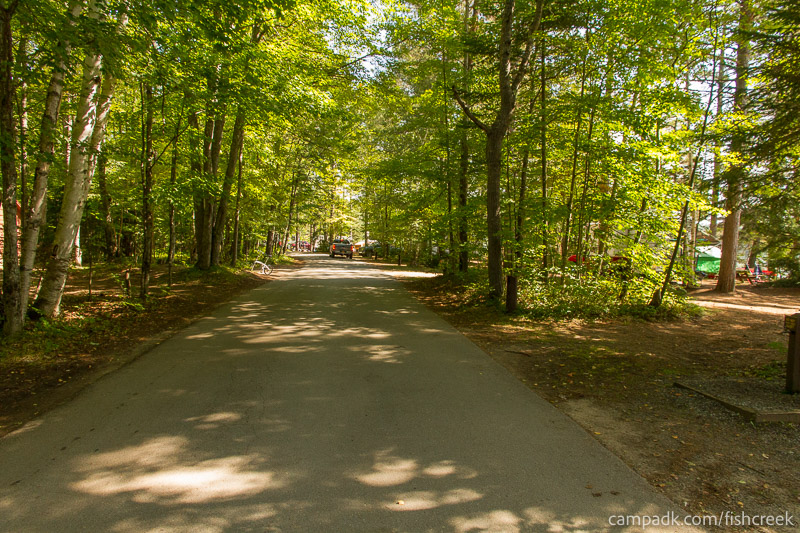 Campsite Photo of Site 261 at Fish Creek Pond Campground, New York - View Down Road from Campsite