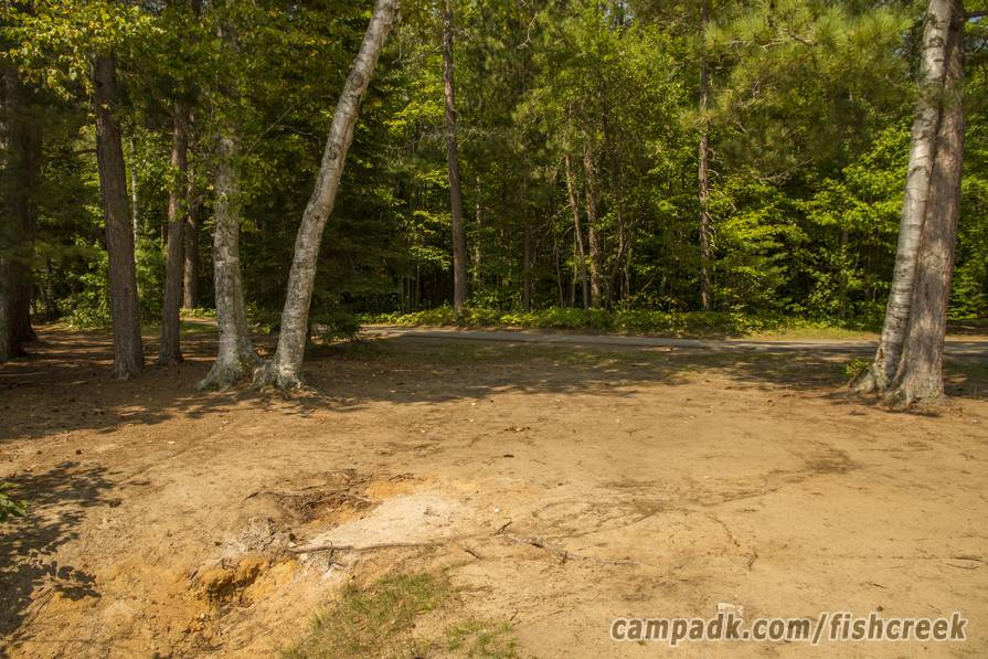 Campsite Photo of Site 121 at Fish Creek Pond Campground, New York - Looking Back Towards Road