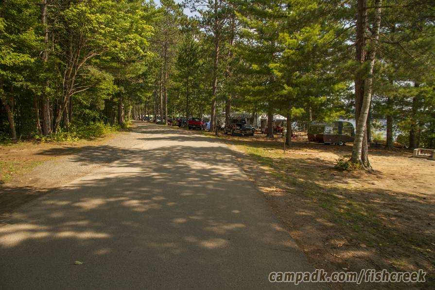 Campsite Photo of Site 121 at Fish Creek Pond Campground, New York - View Down Road from Campsite