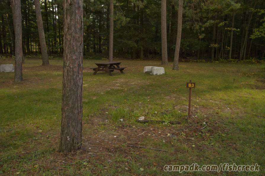 Campsite Photo of Site B3 at Fish Creek Pond Campground, New York - Fireplace View (New)