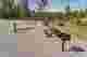 Frontier Town Campground Campsite Photos - Area Blacksmith