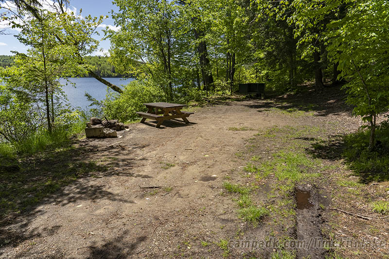 Campsite Photo of Site 5 at Limekiln Lake Campground, New York - Looking at Site from Part Way In