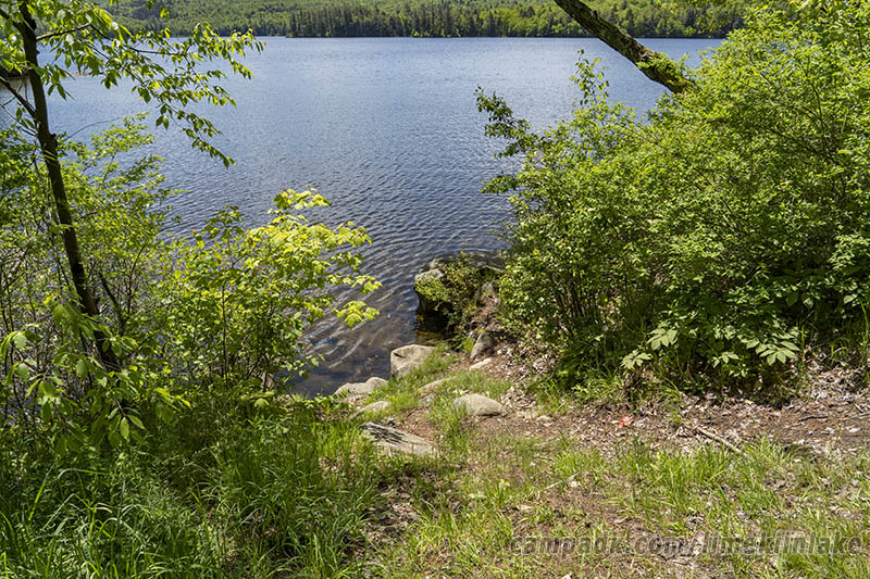 Campsite Photo of Site 5 at Limekiln Lake Campground, New York - Shoreline