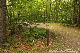 Little Pond Campground Campsite Photos - Site 41