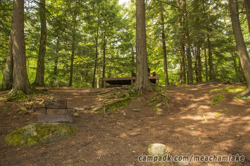 Campsite Photo of Site 186 at Meacham Lake Campground, New York - Returning Along Pathway from Water