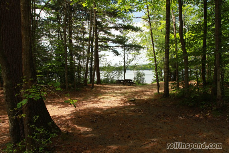 Campsite Photo of Site 173 at Rollins Pond Campground, New York - Looking at Site from Part Way In