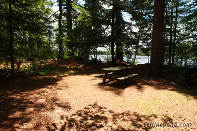 Campsite Photo of Site 213 at Rollins Pond Campground, New York - Looking at Site from Part Way In