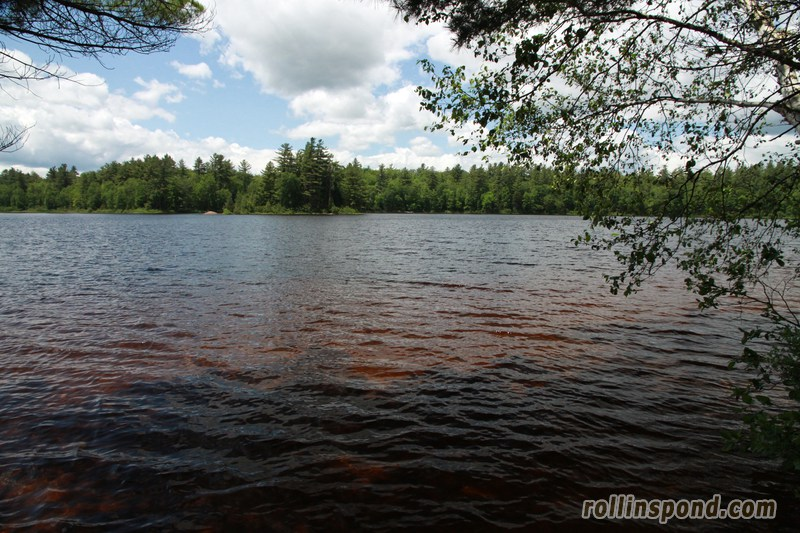 Campsite Photo of Site 213 at Rollins Pond Campground, New York - View from Shoreline