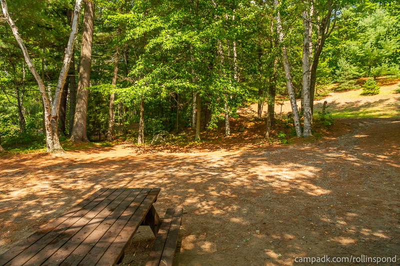 Campsite Photo of Site 13 at Rollins Pond Campground, New York - Cross Site View