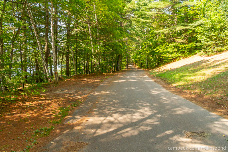 Campsite Photo of Site 13 at Rollins Pond Campground, New York - View Down Road from Campsite