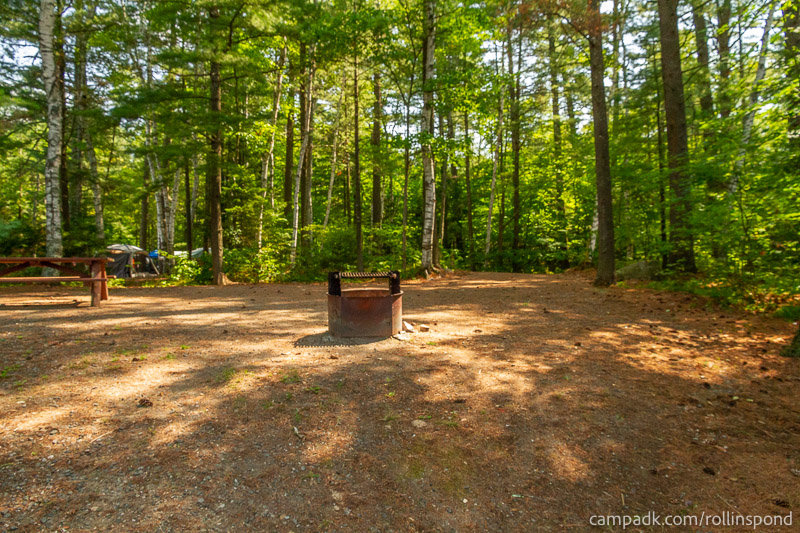 Campsite Photo of Site 36 at Rollins Pond Campground, New York - Returning Along Pathway from Water