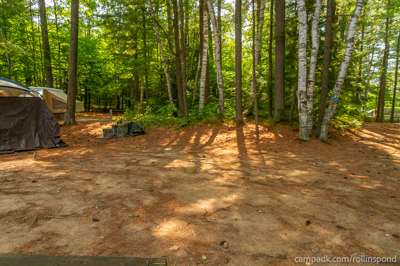Campsite Photo of Site 37 at Rollins Pond Campground, New York - Looking Back Towards Road